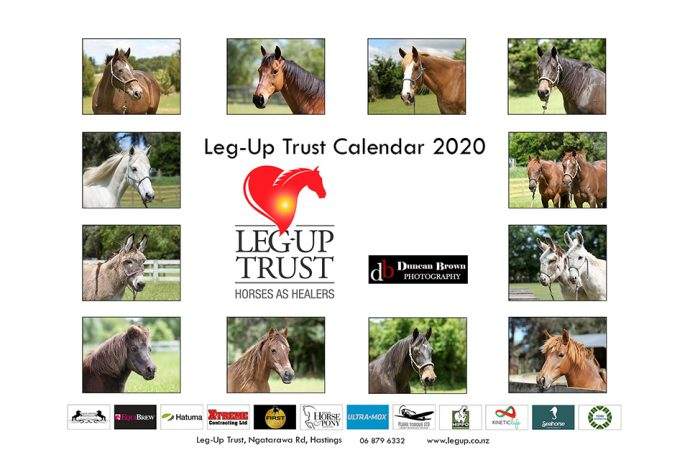 Leg-Up Trust Fundraiser- Horses
